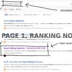 Iklan Organik Untuk Grab Buyer Dari Search Engine Sahaja